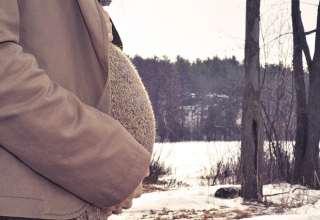 داروی گیاهی برای سقط جنین