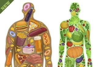 یا لذت غذای مضرر! یا تغذیه سالم وسلامتی